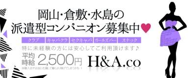 H&A.co